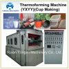 Plastikcup, welches die Formung der Maschine (YXYY750*420, bildet)