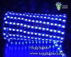 Le luci di striscia del LED impermeabilizzano IP65 (TP-5050-60-B)