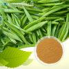Théaflavines d'extrait de thé noir d'approvisionnement d'usine de GMP 10%, 40%, 50%, 60%