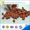 Cápsula dietética da lecitina da soja do suplemento