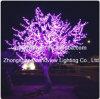 La lumière artificielle rose d'arbre de fleur de cerise de DEL