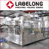 Directo máquina de embotellado plástica automática de las ventas para el té negro