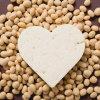 Fibra della soia Non-GMO per il migliore prezzo