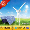 hors de Grid Hybrid Solar Wind Power System (640W)