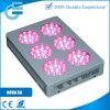 Светодиодные индикаторы развиваться в полной мере светодиодной расти ламп полного