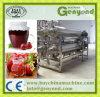 Kartoffel-/Frucht-Massen-Produktionszweig