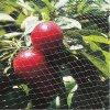 フルーツのケージの網のための100%年のバージンの反鳥のプラスチックネット