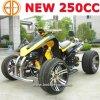 Bode Nuevo VTC de 250cc para el deporte