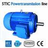 Motor de C.A. da eficiência elevada de ferro de molde Ie3 do IEC 6pole