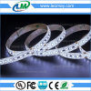 DC12V 높은 루멘 120LEDs SMD3014 유연한 LED 지구 빛