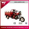 Condução elétrica e motocicleta Trike da exploração agrícola do carregamento do começo de retrocesso 800kg