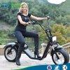 Motocicleta eléctrica de la vespa de los Cocos de la ciudad del precio de fábrica 1200W con Ce