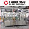 Chaîne de production d'Apple de machine de remplissage de boisson non alcoolique