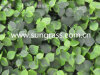 Parede Artificial Decrative grama para decoração de interiores e exteriores (SUNW-MZ00052)