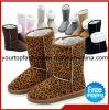 De Laarzen van de Winter van het merk, de Laarzen van de Sneeuw voor Dames, Hoogste Laarzen voor Meisjes, Echte Laarzen, Gemerkt Laarzen, Warme Laarzen