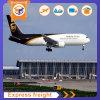 Agente de transporte profissional UPS DHL FedEx TNT Aramex EMS Express Service de Shenzhen para as Ilhas Fiji