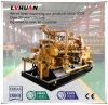 Prix bon marché de constructeur d'OEM de générateur électrique chinois de biogaz