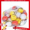 甘いキャンデーのおもちゃキャンデーが付いている純袋のPokemonの球