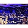 Spannung 110-220V und spezielle Vorhang-Lichter des Gelegenheits-Feiertags-Namen-LED funkelnde der Stern-LED