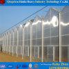 Serre chaude hydroponique de feuille de PC d'arrêt total de Simple-Envergure pour Angriculture