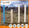 Albero Protecter/protezioni dell'albero/riparo di plastica della pianta