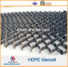 ASTM D Standardplastik-HDPE Geocell ähnlich Geoweb