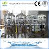 China-Fabrik bester SUS automatisches Wasser-Filtration-umgekehrte Osmose-System