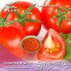 Выдержка порошка томата высокого качества (ликопин 5% 10% 20%) - поставщик Nutramax