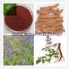 Extrait de Salvia Miltiorrhiza, extrait de racine de Danshen, acide B de Salvianolic