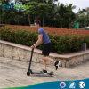 2016 2 عجلات بالغ [فولدبل] تزلّج على الماء رفس [سكوتر] [سكوتر] كهربائيّة