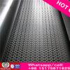 Feuille perforée en acier inoxydable / filet / plaque / fil perforé en métal