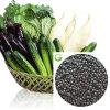 Fertilizante Aminoácido Granular Orgânico