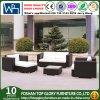 Nuovo sofà del rattan di disegno di Foshan Using esterno o il giardino (TG-JW40)