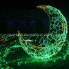 Les lumières de Noël de la famille des décorations d'ornements d'affichage LED feux de lune