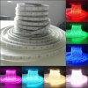 Waterdicht OpenluchtGebruik IP65 Flexibele 220V en 12V RGB LEIDENE Licht van de Strook