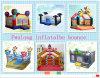 Arrendamento 2015 inflável do Bouncer do projeto novo do divertimento de China (FLCA)