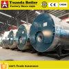 Uitrustend met de Ingevoerde Reeks van Wns van de Brander Natuurlijke Boiler Met gas