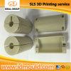 Kundenspezifisches Nylon Gf SLS 3D Printing Prototype