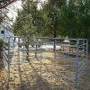 Панели поголовья лошади металла фермы высокого качества круглые