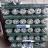 ячеистая сеть дюйма 6X6 покрынная PVC сваренная