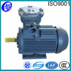 Explosion Proof 3 Phase Asynchronous Motor in AC Motors