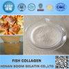 Het Collageen van vissen voor verbetert Immuun, anti-Moeheid