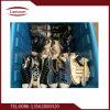 Sapatas usadas da alta qualidade esportes populares