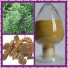 Atractylone Butenolide a, B Langehead Atractylodes Extracto de rizoma
