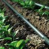 Труба 16mm полива фермы оросительной системы потека земледелия HDPE