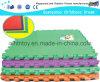 Outdoor PVC mole Mat PVC e borracha Mat (PVC)
