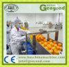 販売のための混合のフルーツジュースの製造プラント