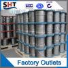 Draad van het Roestvrij staal van de Vervaardiging Ss316 304 van China de Professionele