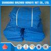 青い残骸の建物のプラスチック足場の安全策の/Antiの火災安全のネットか猫の安全策
