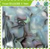 Feuilles d'ormeau de feuille d'acétate de cellulose